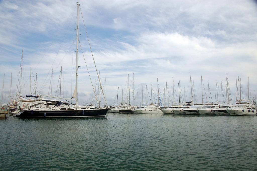 La Palma Harbor